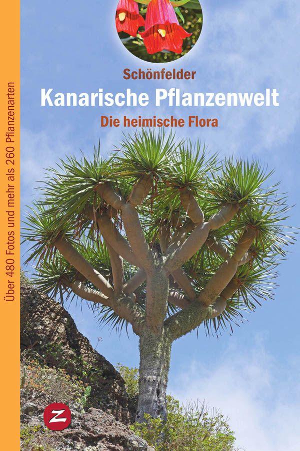 Kanarische Pflanzenwelt, die heimische Flora - de Ingrid y Peter Schönfelder