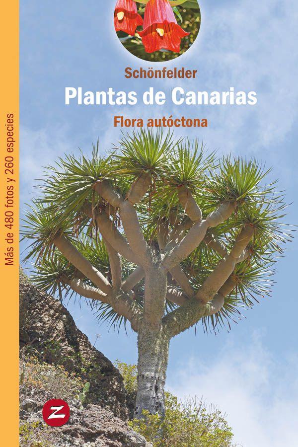 Plantas de Canarias, flora autóctona